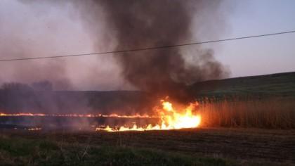 Un incendiu izbucnit marţi a afectat 24 de hectare de păşune şi fond forestier din comuna Poiana Teiului, Neamț